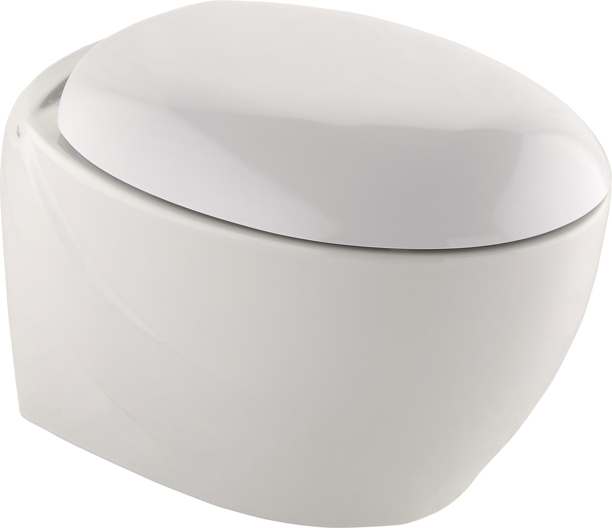 zen wc bidet taharet ks0012. Black Bedroom Furniture Sets. Home Design Ideas